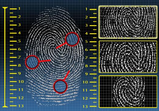 Biometria Dactilar